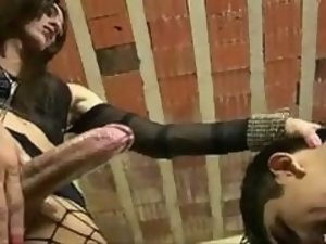 TS mistress fucks guy as sex slave in toilet